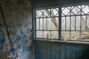 Abandoned house, village in Chernobyl area